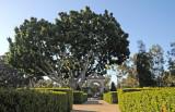 Balboa Park