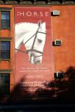 Horse American Museum of Natural History Billboard