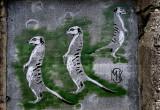 art de rue - Ile de Ré style