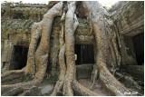 Cambodia Temples of Angkor