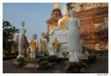 Bouddha  Ayuthaya