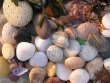 stones on a beach.jpg