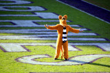The Nittany Lion shows off