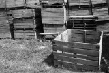 Fruit boxes at Boyds' Orchards