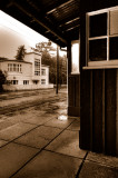 Sheltering from the rain, IOM
