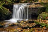 Autumn Waterfall.jpg