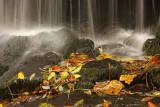 Autumn Waterfall 2.jpg