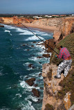 Cliff-top Fishing