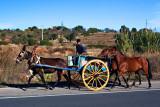Mule Cart