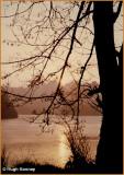 IRELAND - MONAGHAN - ROSSMORE FOREST PARK - CASTLE LAKE
