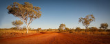 Path to the Outback