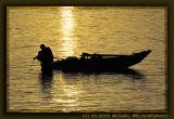 Fishing on River Nile