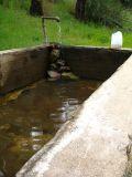 barrel springs water supply.jpg