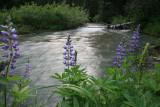 Entiat River
