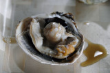Grilled Clam 115.jpg