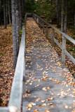 Birdsacre Boardwalk #2