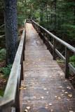 Birdsacre Boardwalk #3