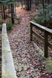 Birdsacre Boardwalk #5