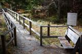 Birdsacre Boardwalk #6