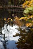 Birdsacre Pond Bridge #4