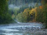 Elwha River Autumn