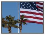 Desert Flag