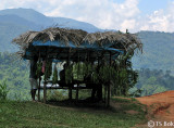 Orang Asli hut.jpg