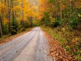 fall_has_fell