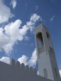 Mosque Ray.jpg