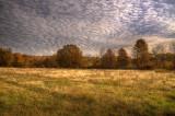 Fall Field-3 *.jpg