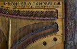 Kohler and Campbell-2.jpg