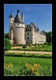 Chateau de Chenonceau 9