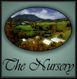 the_nursery