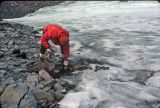 Filling Water Bottles Off  Packwood Glacier Run Off ( Sept. 1977)