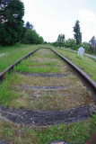 Last Remains Of   Praire Line  From Tenino To Tacoma
