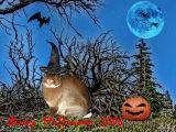 Pet Bunny Halloween 2006