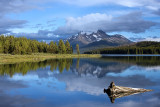 Canadian Rockies, 2008