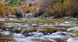 Crystal River - Angel Falls 1