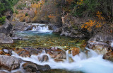 Crystal River - Angel Falls 2