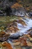 Crystal River - Angel Falls 4