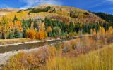Crystal River - Sunny Hillside