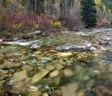 Crystal River 1