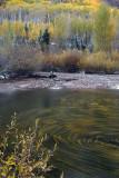 Maroon Creek & Swirling Leaves