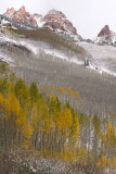 Snowmass Area - Snowy Fall Color 2