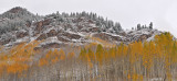 Snowmass Area - Snowy Fall Color 4