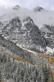 Snowmass Area - Snowy Fall Color 6