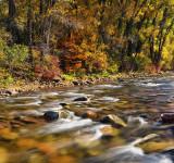 Sunny Roaring Forks River