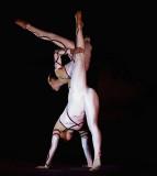 acrobatic_gym