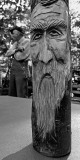 CRADLE OF FORESTRY - WOOD CARVING