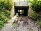 passage souterrain, Drève du Tambour et Drève des Loups.